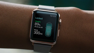 Tesla_AppleWatch_ELEKSlabs_63